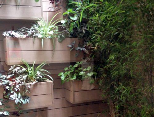 Diseño de jardín vertical en Madrid