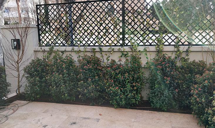 Proyectos de jardinería en patios y terrazas