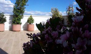 decoracion y jardinería en terrazas y áticos