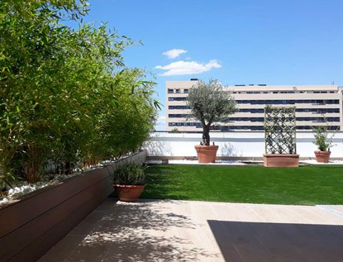 Diseño de jardin en terraza ático en Valdebebas