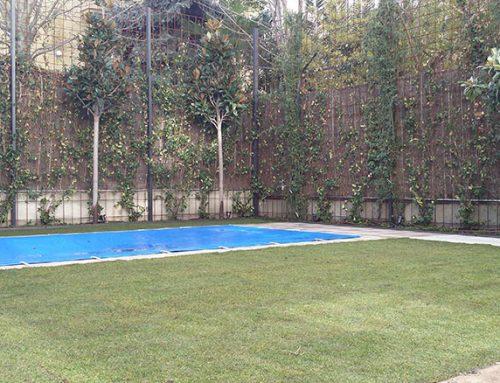 Diseño de jardín con piscina en una vivienda unifamiliar en el Viso